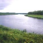 Пять экопроектов региона претендуют на 165 млн рублей из федерального бюджета