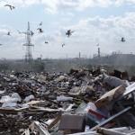 Строительство полигона ТБО в Слободском районе не отменят