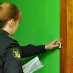 Житель Пижанки обматерил судебного пристава: возбуждено уголовное дело
