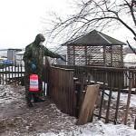 В Кировской области три новых случая бешенства