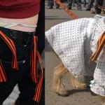 Россиян попросили придерживаться правил ношения георгиевских ленточек