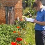 Жителей Кировской области накажут за выращивание мака