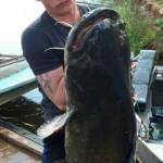 В Кировской области поймали гигантского сома