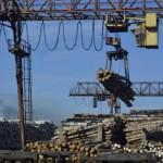 Главе Шабалинского завода грозит срок