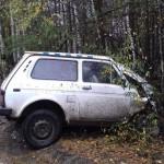 Около Кирса водитель Нивы врезался в дерево: мужчина был пьян