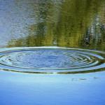 В области в реке Молома утонул мужчина: следком проводит проверку