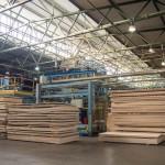 Правительство области утвердило заявку на инвестпроект «Вятского фанерного комбината»