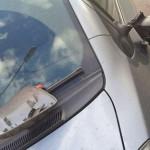 В Кирове сотрудники Росгвардии задержали молодых людей, отрывавших зеркала у машин