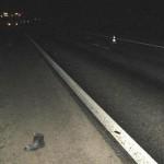 В Нолинском районе на трассе насмерть сбили 53-летнюю женщину