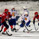 Сформирован новый состав правления кировского хоккейного клуба «Родина»