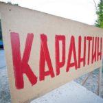 В Свечинском районе введен карантин по бешенству: на трех других территориях региона карантин снят