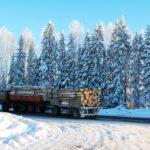 Установлены объёмы заготовки древесины для собственных нужд жителей Кировской области в 2018 году