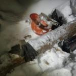 В Кировской области рабочего раздавило деревом: возбуждено уголовное дело