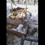 «Кладбищенские войны»: в Калуге ритуальщики выкопали похороненного без их участия покойника