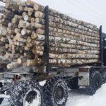 Почти 4 тысячи кубометров бесплатной древесины получили жители Слободского района
