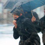 МЧС: На Кировскую область надвигаются дожди с сильным ветром