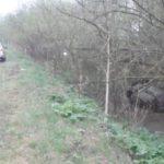 В Кирово-Чепецком районе автомобиль опрокинулся в кювет: 63-летняя пассажирка погибла