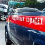 Следком: в Мурыгино найдено тело предположительно Романа Шевцова, совершившего суицид