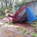 Ураган в Кирове: десятки поваленных деревьев, 12 снесенных остановок и многочисленные обрывы проводов