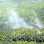 При авиапатрулировании в Верхнекамском районе обнаружили лесной пожар