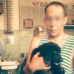 «Собака мне надоела»: Чепчанин попытался объяснить, зачем убил собаку, сбросив ее с 6 этажа многоэтажки