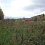 В Котельниче проводятся проверки правомочного и целевого использования земель