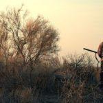 В Кировской области утверждены лимиты добычи охотничьих животных