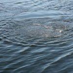 В Омутнинске утонул 29-летний мужчина