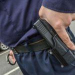 В Кирово-Чепецком районе сотрудники полиции застрелили собак, серьезно искусавших двух человек