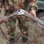 В Котельниче мужчине, убившему лося, грозит до двух лет лишения свободы
