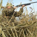 В Кировской области открылся сезон охоты на водоплавающую и боровую дичь