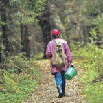 Подростка в Кильмезском районе нашла сотрудник МО МВД «Слободской», которая приехала в лес за грибами
