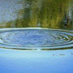 В Тужинском районе в пруду утонул мужчина