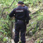 В Верхнекамском районе обнаружили останки грибника, который пропал 6 лет назад