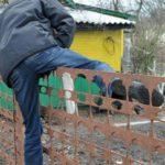В Кирово-Чепецке арестовали вора – «гастролера»
