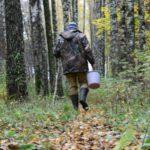 В Свечинском районе заблудившийся грибник два дня провел в лесу: мужчину нашел ветеран МВД