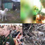 Итоги недели: чиновники, отобравшие детей, суд над владельцем собак-убийц и дело краснодарских каннибалов