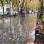 Погода на неделю: жителей Кировской области ждут дожди