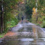 Погода на выходные: в Кировскую область придут дожди