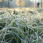 МЧС: В Кировской области ожидаются заморозки