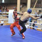 Более 130 спортсменов приняли участие в Кубке Кировской области по кикбоксингу