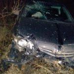 В Кирове водитель «Тойоты» из-за собаки на дороге вылетел в кювет и врезался в дерево: двое человек получили травмы, один из них – ребенок