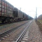 В Кирове полицейские оштрафовали двух пьяных мужчин за проезд на подножке поезда