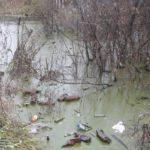 В Котельниче образовался «пруд» из канализационных стоков и мусора