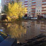 В Кирове во дворе дома в огромной луже поселились утки