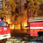 МЧС: Причиной пожара в центре отдыха «Летучий корабль» стало короткое замыкание
