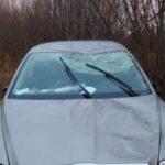 В Малмыжском районе «Шкода» съехала в кювет: пострадали три человека