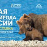 ЦСИ «Галерея прогресса» представляет фотовыставку «Дикая природа России»