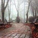 Прогноз погоды: в Кировской области на праздники ожидаются дожди
