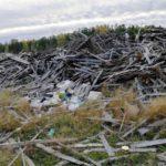 В Кирсе обнаружили свалку отходов от лесопилки площадью в несколько футбольных полей